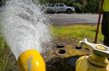 Flushing 2021